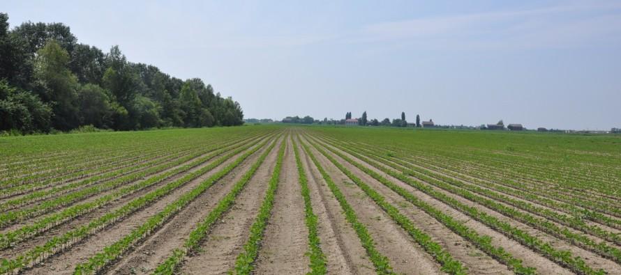 Greening: le esenzioni e le sanzioni per gli agricoltori