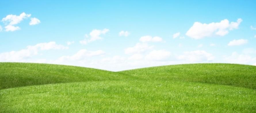 Greening e diversificazione: la scelta delle colture è libera