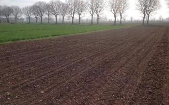La semina del mais nel PAG di Castiglione delle Stiviere