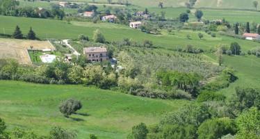 Espropri terreni agricoli: non fidatevi della composizione bonaria
