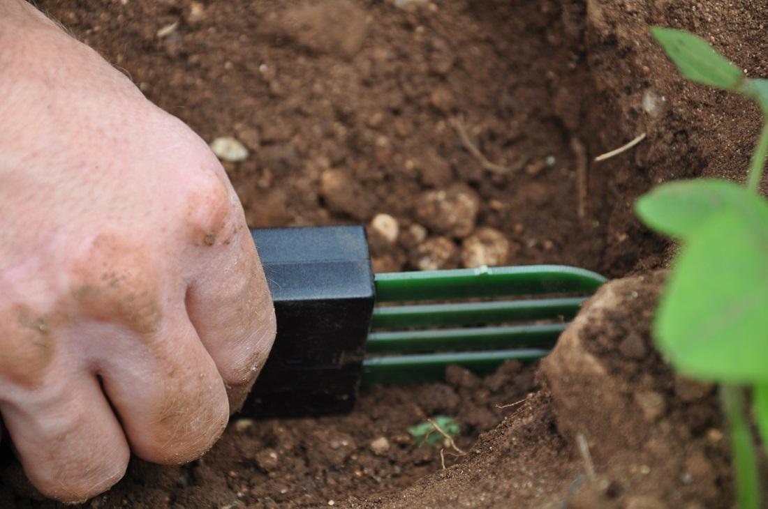 Posizionamento della sonda per misurare la quantità di acqua del suolo.
