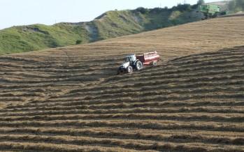 Pac e agricoltori attivi: la dichiarazione Iva e la partita Iva