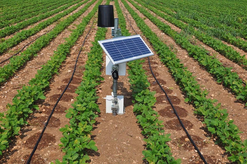 La centralina a energia solare che riceve ed elabora il grafico dell'andamento dell'acqua nel suolo consultabile dal computer.