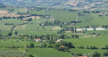 Pac: soglia minima 250 euro, dimensione minima 0,5 ettari