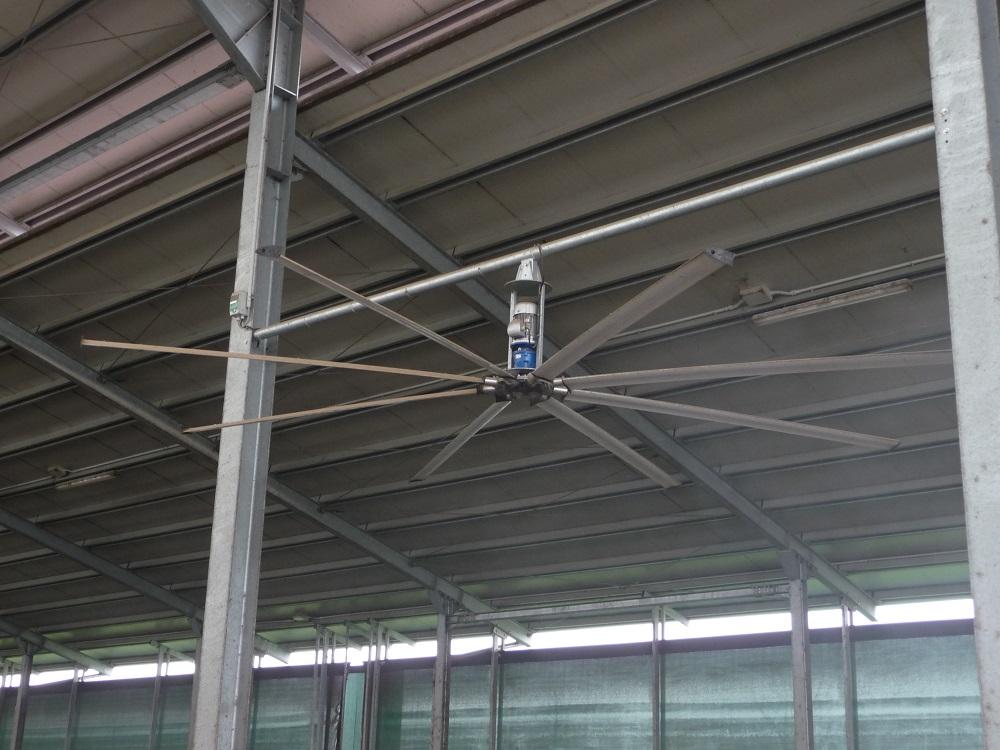 Un ventilatore a soffitto che funziona a bassa velocità ma che movimenta una grande massa di aria.