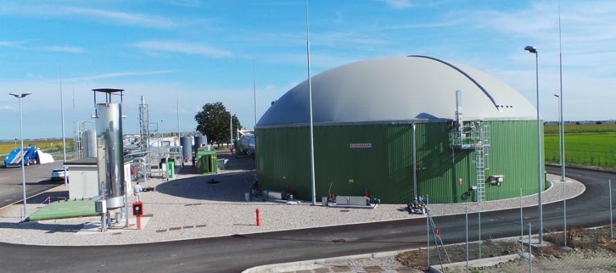 Biogas, mais e trinciatura: quando i conti non tornano