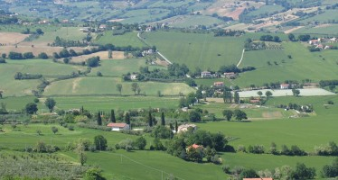 Pac, il regime semplificato per piccoli agricoltori: scadenza 15 ottobre