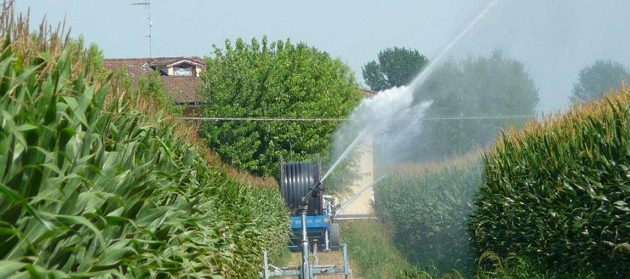 PSR Emilia-Romagna, ecco i bandi per finanziare i giovani agricoltori