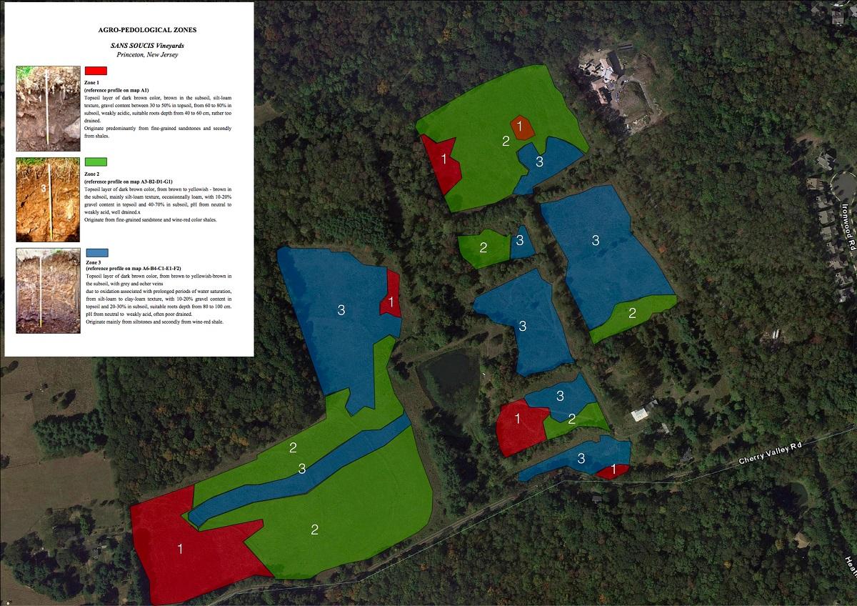 La mappa realizzata con il metodo Arp suddivide l'appezzamento in diverse zone colorate. Le aree blu corrispondono a suoli più argillosi, mentre le rosse a suoli sabbiosi. La zona verde indica il medio impasto.