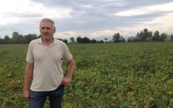 Foletti: cinque anni di successi con la subirrigazione su mais e soia