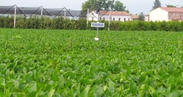 Approvato il PSR Friuli Venezia Giulia: ecco il primo bando finanziato