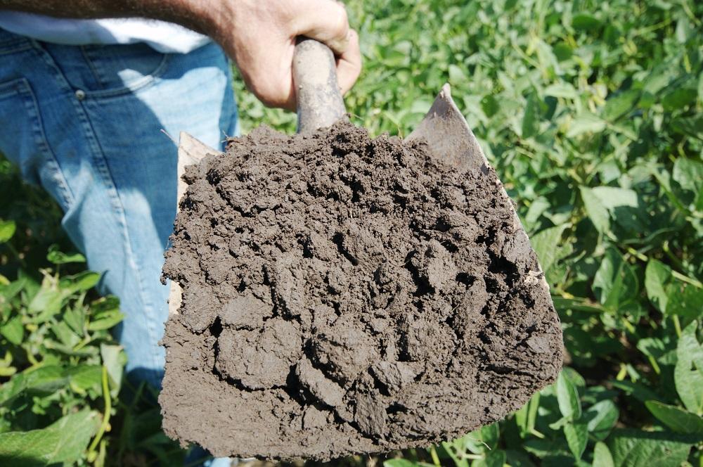 Il suolo agricolo è il bene più prezioso che abbiamo e dobbiamo fare di tutto per aumentare la sua fertilità globale.
