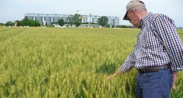 Ecco perché i prossimi cinque anni sono decisivi per la sopravvivenza delle aziende agricole
