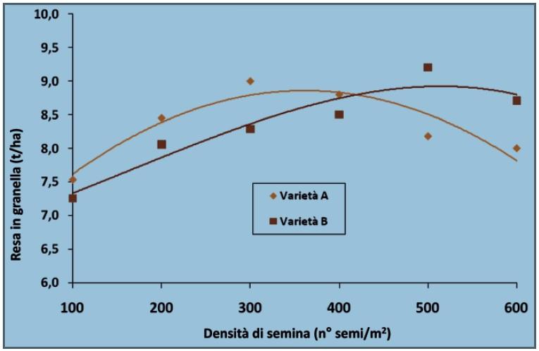 Resa di due varietà seminate a diverse densità. La varietà A riduce le rese sia alle basse che alle alte densità di semina. La varietà B ottiene le più alte rese con investimenti fitti. Elaborazione dati Horta.