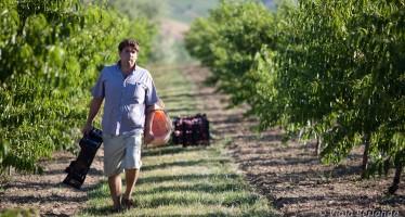 Senza gli agricoltori il mondo si ferma. Ma per loro, solo pochi titoli di coda