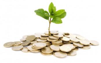 Pac: come si calcola il valore dell'importo del pagamento greening