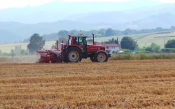 PSR, come utilizzare la Misura 16 per investire sull'innovazione agricola con gli aiuti europei