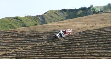 Forte ritardo nei pagamenti Pac: è colpa della verifica sugli agricoltori attivi?