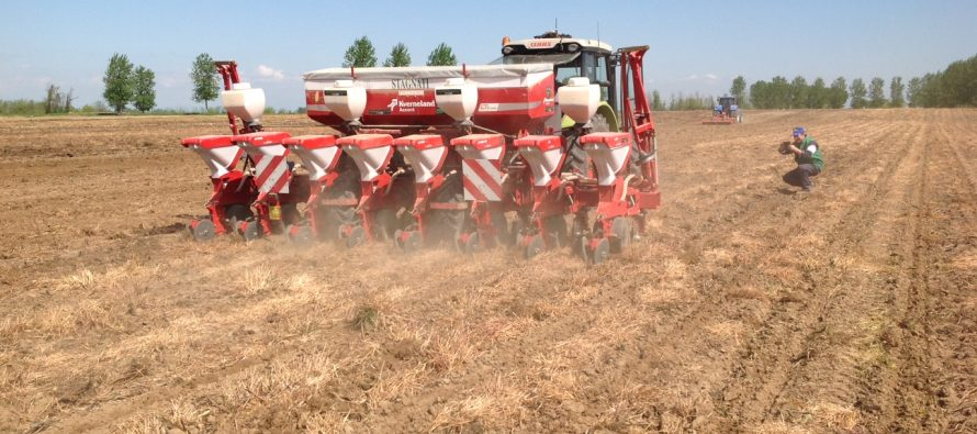 Il connubio vincente tra agricoltura conservativa e dosi variabili di sementi e fertilizzanti