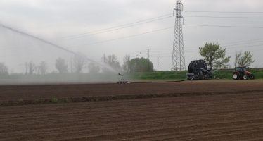 Concimazione innovativa in post-emergenza del mais: una tecnica che sta dando ottimi risultati