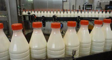Pac: i requisiti di qualità e igiene del latte per ricevere gli aiuti accoppiati per i bovini