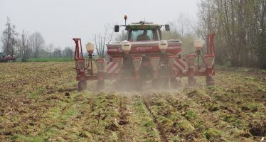 Riserva nazionale Pac: la partita Iva serve ad Agea per verificare l'inizio dell'attività agricola
