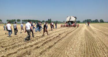 Il governo vara il Collegato Agricolo: ecco le nuove norme che potrebbero migliorare il settore