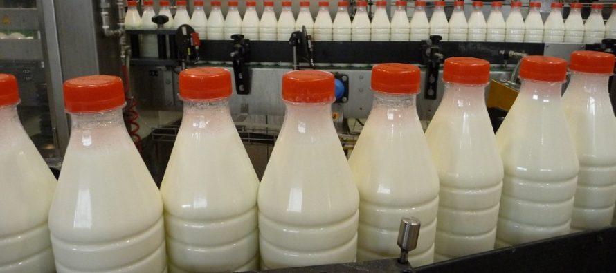 Bruxelles stanzia 150 milioni di euro per produrre meno latte. Ma è la soluzione giusta?
