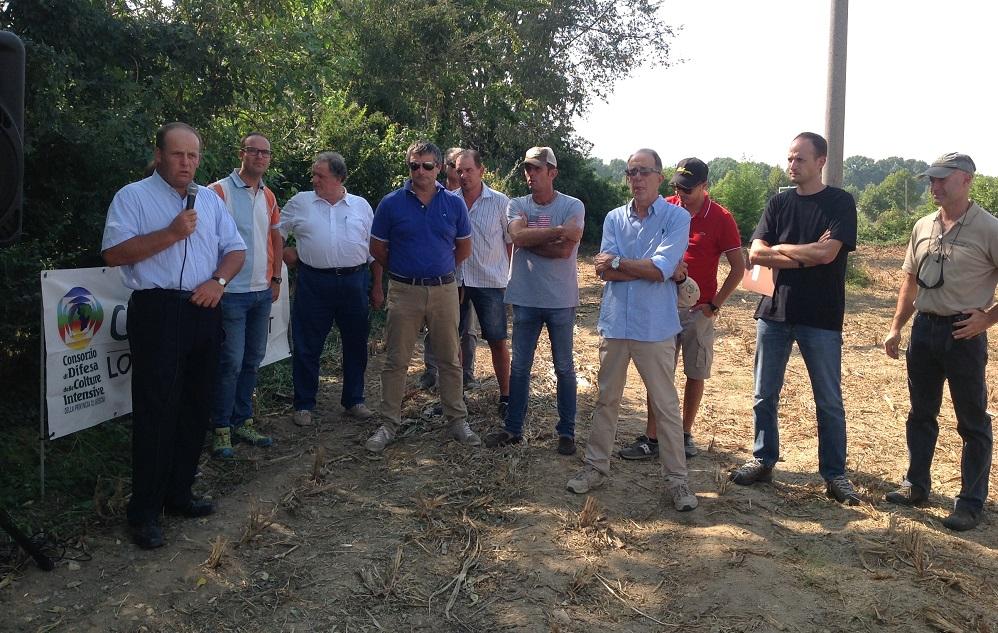 A sinistra Giacomo Lussignoli, presidente Condifesa Lombardia Nord Est, apre la giornata in campo. Il quinto da sinistra è Massimo Motti con a fianco i tecnici di Padana Sementi Elette, Fior e Pignata, e Mauro Agosti di Condifesa (l'ultimo a destra).