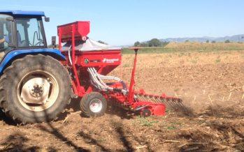 Cereali, l'Umostart microgranulare nel solco di semina per fornire fosforo assimilabile e far assorbire tutto l'azoto in copertura