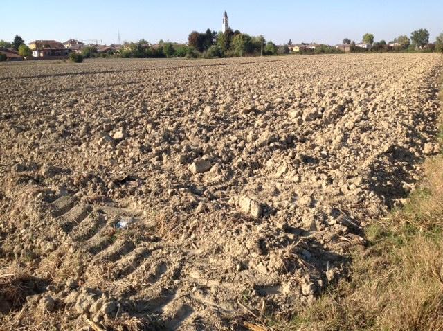 Su questo campo arato dovrà passare almeno due volte un erpice rotante per affinarlo prima della semina del cereale autunnale. Ma quanto costa? Qualcuno fa i conti?