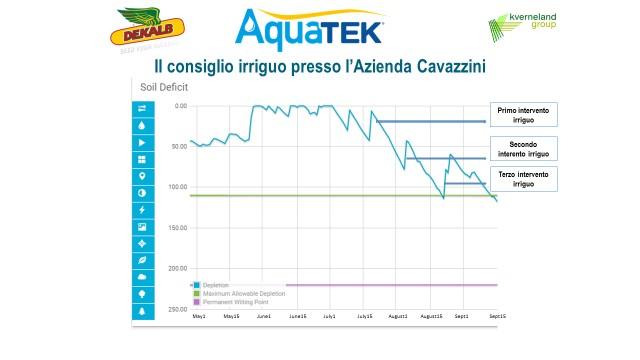 grafico-3-cavazzini