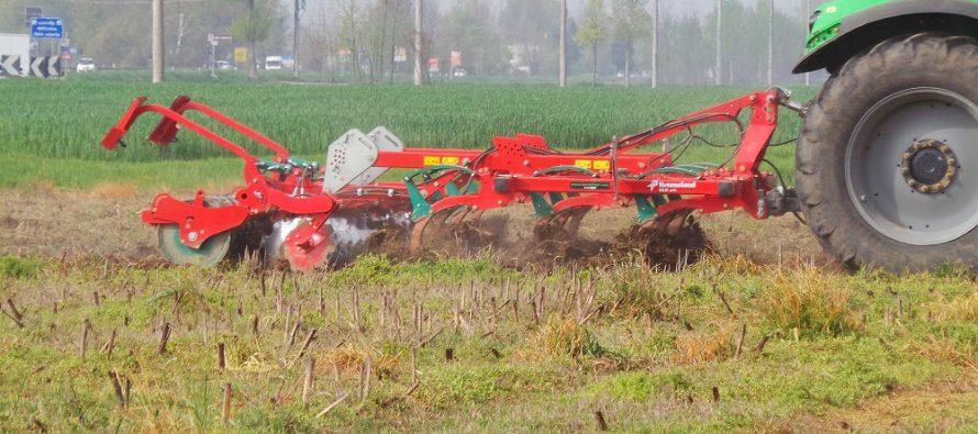 Tre regole per eliminare malerbe e micotossine con l'agricoltura conservativa