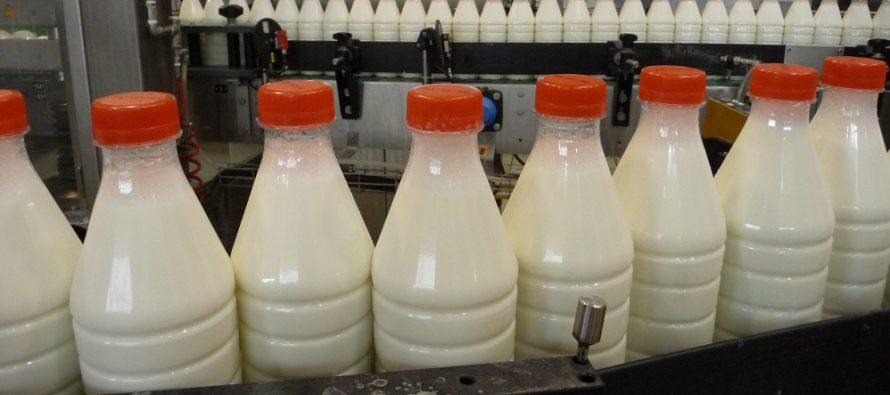 Il prezzo del latte finalmente aumenta. Ma non abbassiamo la guardia sull'efficienza della stalla