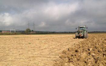 """Non c'è futuro in agricoltura per chi dice: """"Abbiamo sempre fatto così"""""""