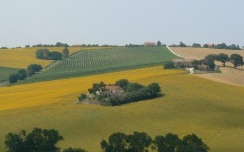 Come trasferire titoli Pac tra piccoli agricoltori, velocemente e con poca burocrazia