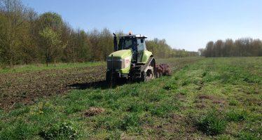 Terreni argillosi e infestati: ecco come il Qualidisc riesce a preparare il letto di semina
