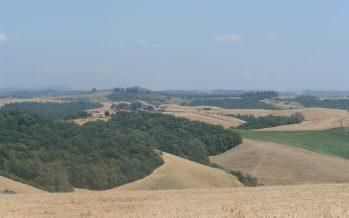 Agricoltura e primo insediamento: rilevare i titoli Pac dal proprietario o fare domanda alla riserva nazionale?