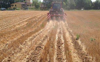 PSR: la misura 10 non basta a convincere gli agricoltori a convertirsi a minima lavorazione e sodo