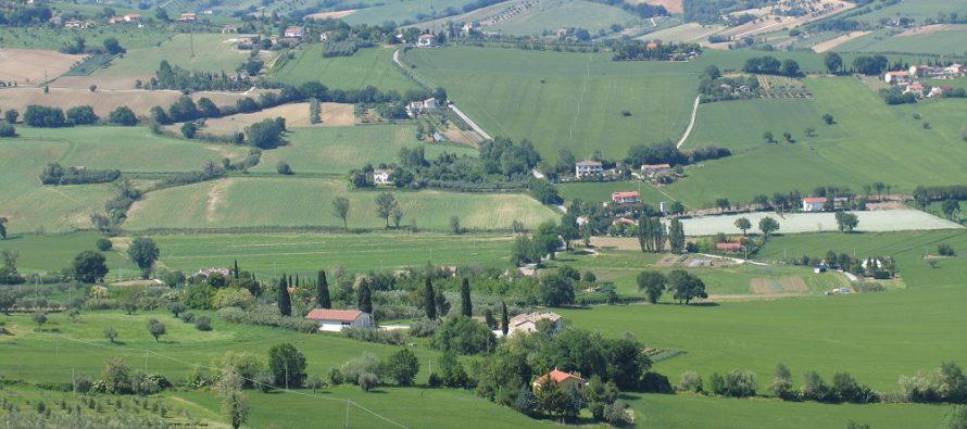 Pac, dal 2018 nuovo regolamento per semplificare il greening