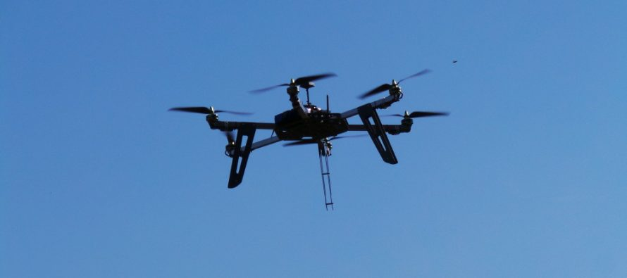 Lotta alla piralide del mais: il drone è più versatile e tempestivo dei trampoli