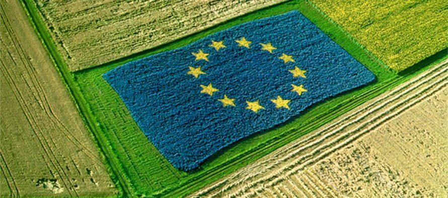 Come volete che sia la nuova Pac post 2020? Ecco cosa rispondono agricoltori e cittadini