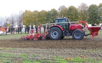 Il grano duro non tradisce e rimane la coltura numero 1 in Italia
