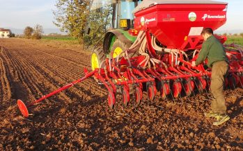 Grano duro di qualità Armando, i conti tornano: la risposta a chi non crede nei contratti di coltivazione