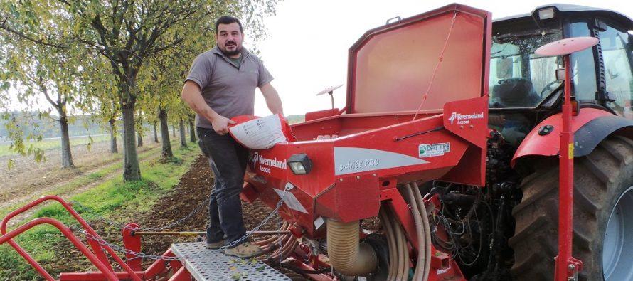Semina cereali, occhio all'acquisto del seme: deve essere certificato CQ per la garanzia di qualità