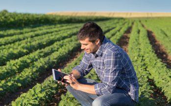 Cosa deve fare un giovane agricoltore se subentra in un'azienda con titoli Pac molto bassi
