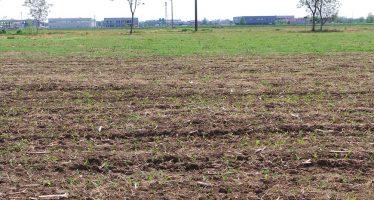 Banca delle terre Ismea: aperta la procedura per la vendita di 8mila ettari