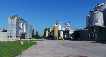 Le certificazioni di sostenibilità del processo produttivo che aiutano l'agricoltore a vendere meglio
