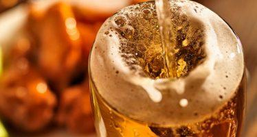 Luppolo, una coltura da riscoprire: buon reddito grazie alla crescita delle birre artigianali