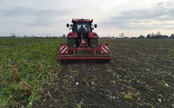 Qualidisc su cover crops prepara il letto di semina per la bietola in terreni pesanti